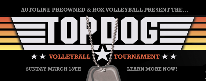 TOPDOG Volleyball Tournament!