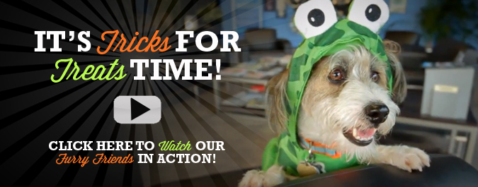 It's TRICKS for TREATS time at Autoline!